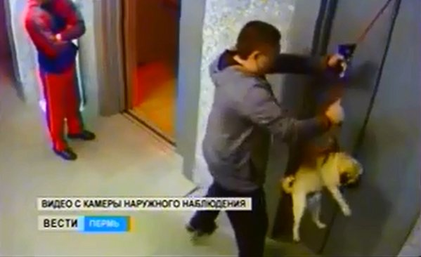 Man-saves-dog-from-death-at-the-elevator