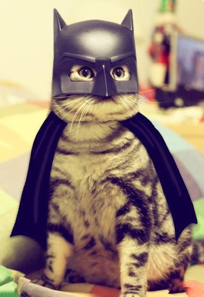 Batman came to rescue whoever is in danger.