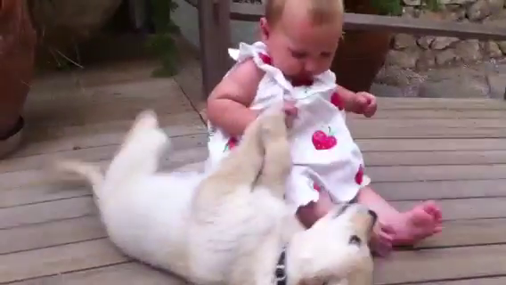 Golden Retriever puppy loving baby