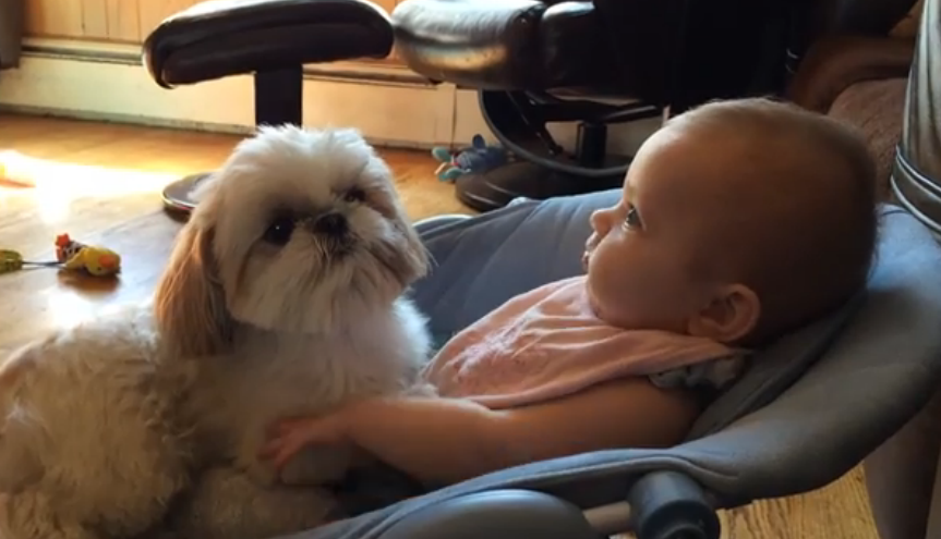 Adelyn the baby and Abba the dog are best friends, so Mom came to capture the precious moments.