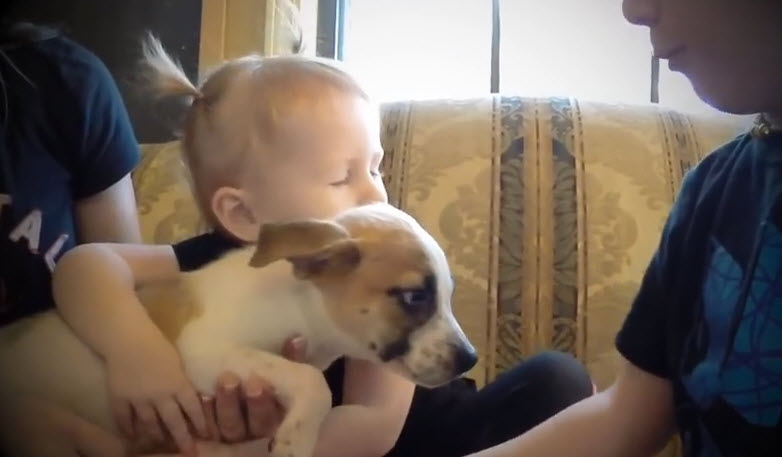 A family is very exciting and the reason is adopting a new puppy.