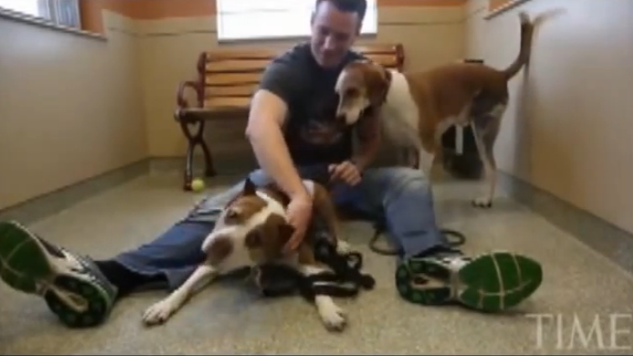 When he was about to commit suicide, his pit bull dog stepped in, what happened next was unbelievable.
