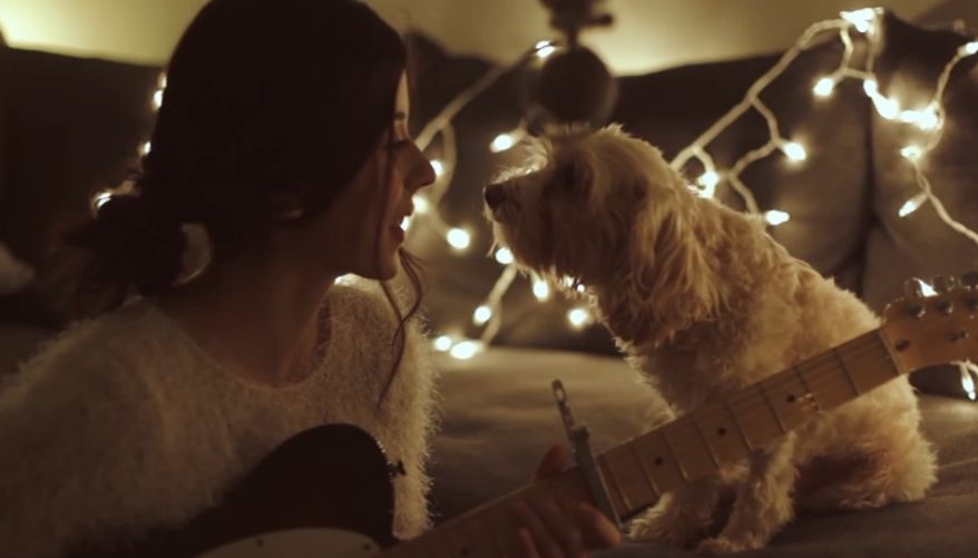 When her owner starts to sing a Christmas song, her dog reacts like this, and it's priceless.