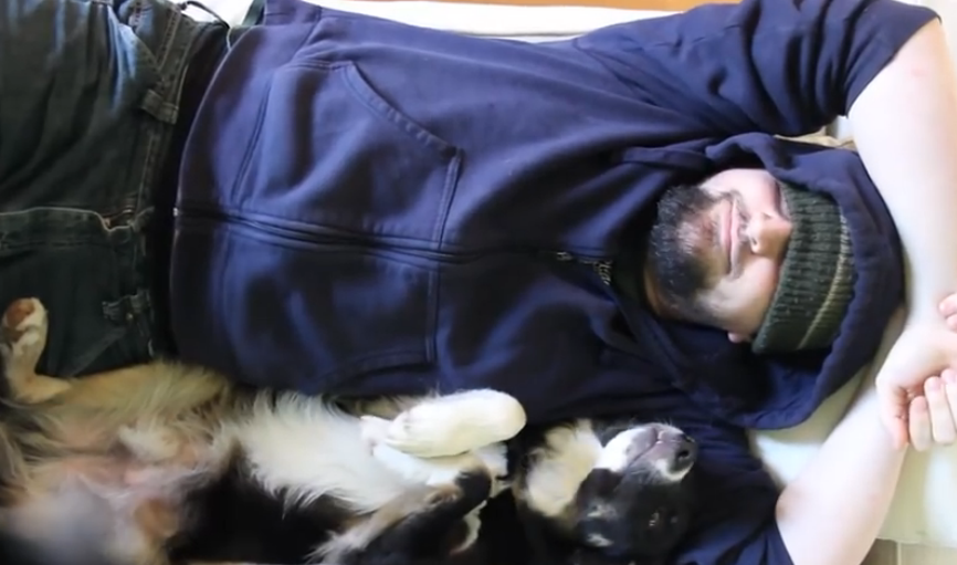 Watch what this dog does each time his owner goes for a nap.
