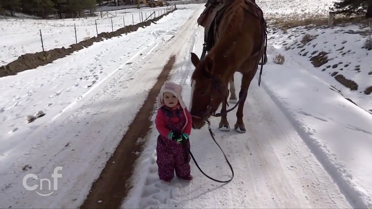 Emma is walking with her horse Cinnamon in the snow. Adorable!