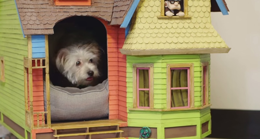 Disney-Pixars-UP-Dog-House-SUPER-FAN-BUILDS