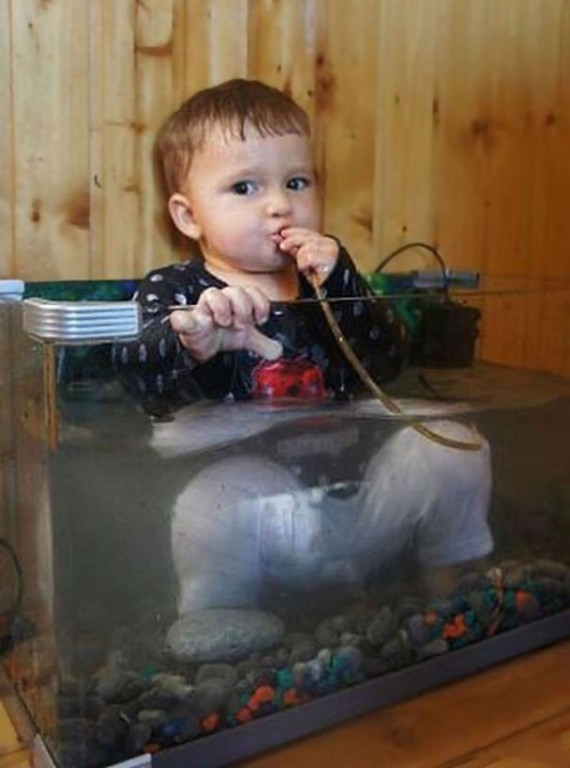 13-He ate the fish then sat in the tank after that!