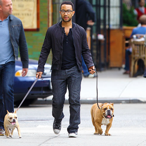john-legend-dogs