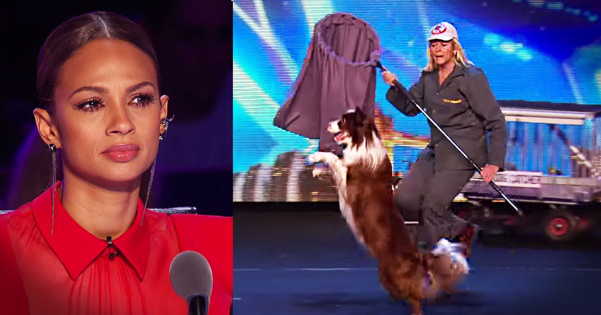 image_1432837812_jd_godvine_dog_catcher_routine_britains_got_talent_FB