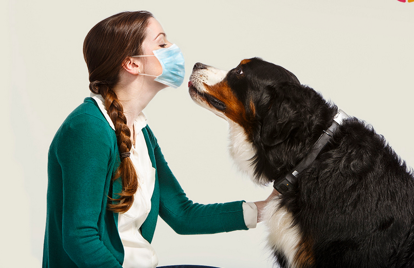 Is someone in your family allergic to animals?