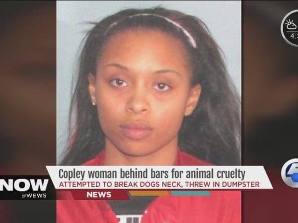 Copley_woman_jailed_for_throwing_dog_in__3453520001_24328144_ver1.0_640_480-600x450