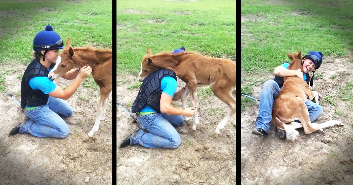 image_1429648255_jd_godvine_girl_meets_horse_and_it_hugs_her_FB