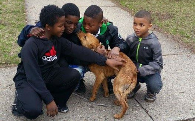 detroit-boys-rescue-dog