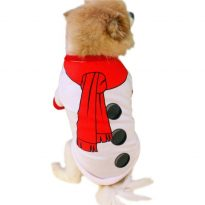 Dog Snowman Outfit