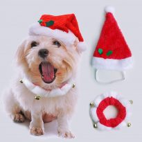 Pet Christmas Hat