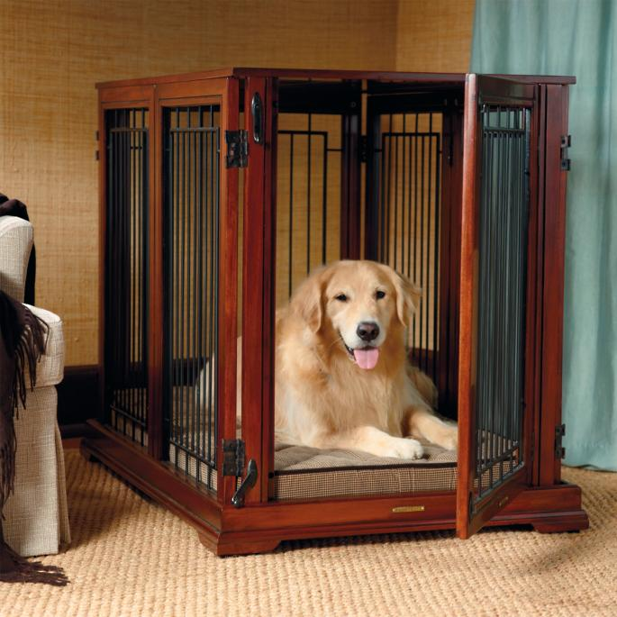 Dog In A crate. Puppy Potty Training Tips