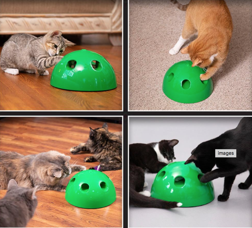 How to Litter Train A Kitten- Interactive Peek A Boo toy for kittens and cats